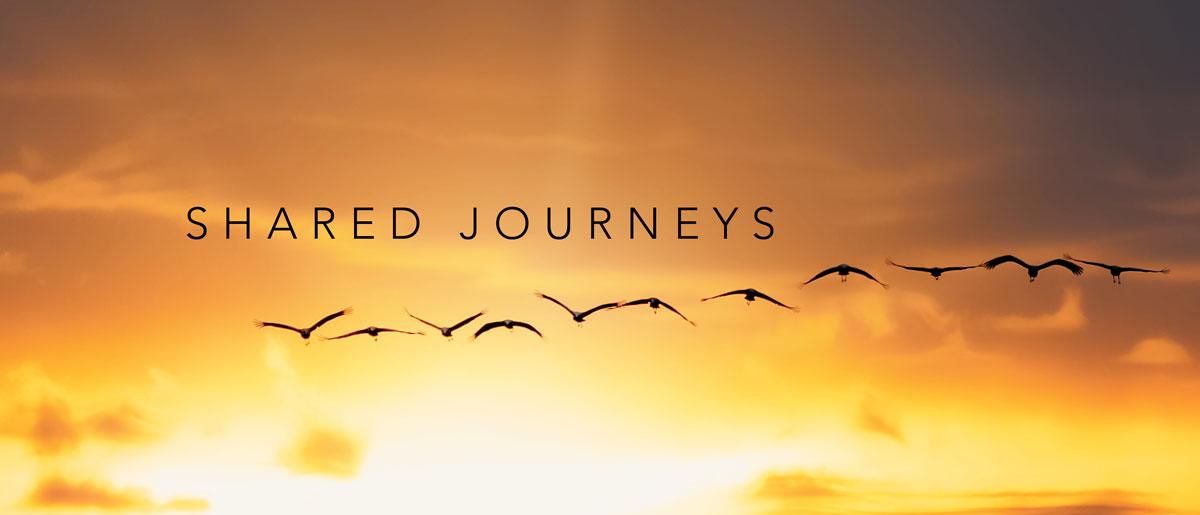 shared-journeys-web-01